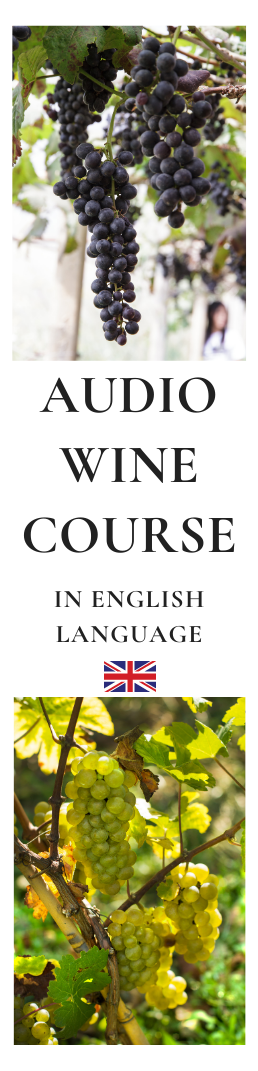 Audio Wine Course English Language